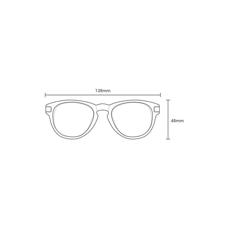 Gafas Carve: ICON (Black 2541 PRP02)