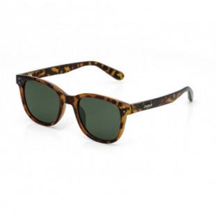 Gafas Carve: HOMELAND (Tort Green Pola 3450 PRP01) Carve - 1
