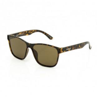 Gafas Carve: GATTACA (Brown Tort Pola 3461 PRP01) Carve - 1