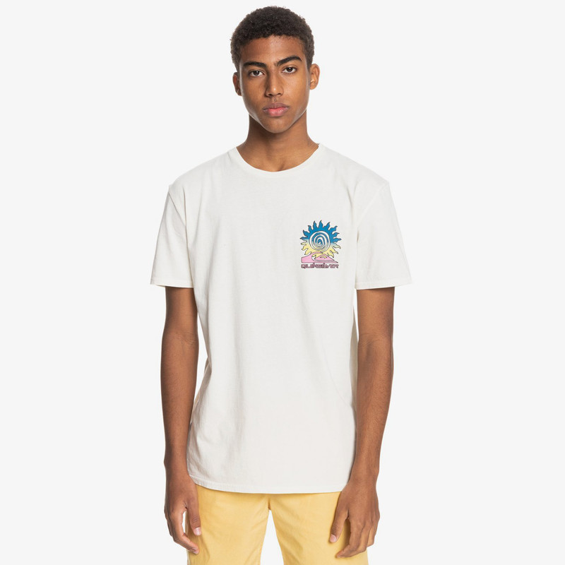 Camiseta Quiksilver: Island PuLSe SS (Snow White)
